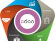 Develop an Odoo ERP module