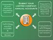 Provide an hour of accountancy advice on annual accounts.