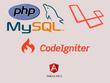 Do 1 hour customization to Laravel | Codeigniter |PHP | Angular JS