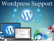 Provide Theme Upgrade Support for your Wordpress Website