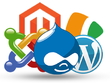 Install and configure any CMS (WordPress/Drupal/Joomla)