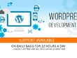 Develop wordpress theme from html, psd, fully responsive, seo optimized wordpress