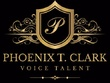 English Voice Over up to 500 words 24hr