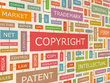 Draft your application for IP, trademarks, copyrights, patents, designs