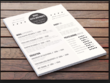 Create a visually stunning CV within 48 hours