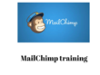 Provide 1 hour basic mailchimp training