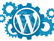 Provide an hour of Setup / Updates / Customization to your wordpress based website