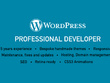 Develop a responsive, SEO friendly, fast loading bespoke Wordpress site