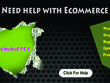 Provide one hour of eBay support, fixes, customization