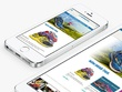 Design a fully featured Responsive eCommerce website online shop Wordpress