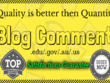 Create 30 niche relevant high DA SEO blog comment for your website/blog