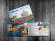 Design Stunning  Booklets and Catalogs -  Any Paper Size - 20 Pages