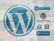 Install and configure any WordPress theme  as per demo