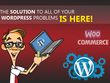 Fix any Wordpress, themes and plugin issues within few hours.