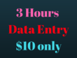 Do 3 Hours Data ENTRY Job