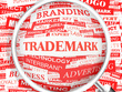 Consult and File Trademark, IP, Copyright, Patent in whole EUROPE