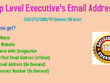 Provide you 100 contact details of top level executives
