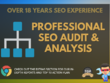 Detailed, manual SEO audit and top 10 strategy plan, rank better
