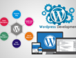 Develop Wodrpress Website Or Migrate Your Site To Wordpress