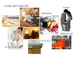 Create a concept design (incl mood board) for any space