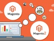 Resolve any Magento2 issue and make your store Up-to-date