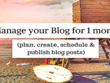Manage Your Blog For ONE Month (4 x Blog posts)