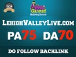 Write a SEO Friendly/Premium Article and Guest Post on Lehighvalleylive.com - DA70