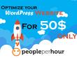 Speed Optimize your WordPress website