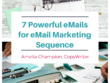 Write effective 7 email marketing sequence with magnet for leads