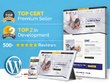 Create a top-Quality Premium Responsive WordPress/CMS website