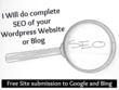 Do SEO Of WORDPRESS Website Or BLOG