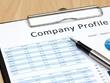 Write A Superb 1000 word Sales Driven Company Profile