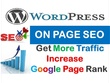 Wordpress On-Page Optimization