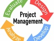 Write Project Management Content (up to 1,000 Words)