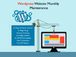 Provide Monthly Wordpress Website Maintenance & Support