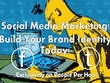 Do HIGH quality social media niche targeted marketing campaign