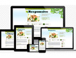 Build fast, responsive website and, cms(e.g wordpress)