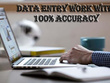 Do Any Type Of Data Entry & PDF Conversion for 2 Hours