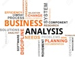 Work as Business Analyst for your project