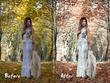 Color correct 10 images in Lightroom