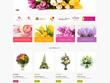 Online Store / Shop or E-Commerce Website using WooCommerce