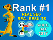 Create 100% Manually 70 PR10 High Authority Backlinks-White Hat