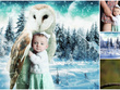 Photo edit / manipulate / composite / restore / merge & more.