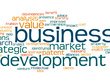 Will be a business developer for your IT firm for 1 week