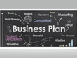 Develop with you a professional, investor ready business plan