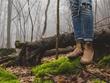 Publish a guest post on greenlodgingnews.com - DA51