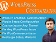 Do Any WordPress Customization within 24 hours