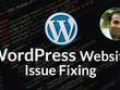 Provide 1 hour WordPress Website Issue/Bug Fixing