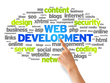 Make professional and responsive  website for you