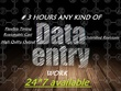 ✔ do all type of data entry work for 3 hours